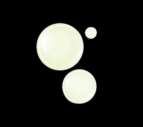 CONCENTRÉ ANTI-CAPITONS (2)